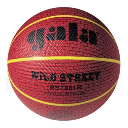 Мяч баскетбольный WILD STREET 7 BB7081R