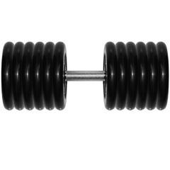 Гантель 61 кг черная неразборная