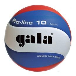 Волейбольный мяч PRO-LINE BV5591S