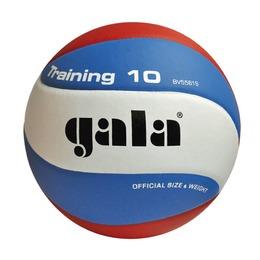 Волейбольный мяч TRANING BV5561S
